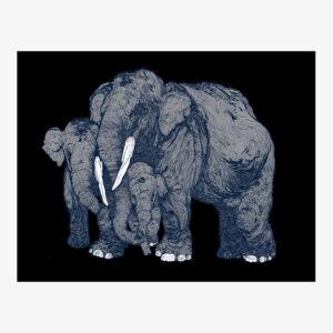 forest_encounters_elephants_grey