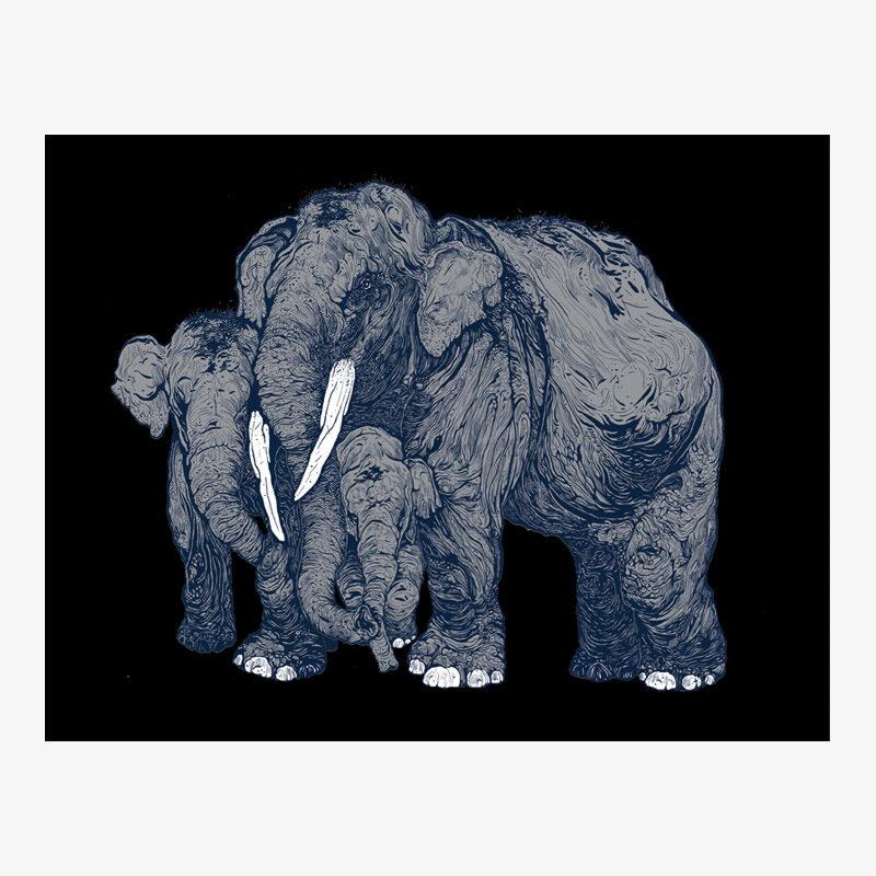 Forest Encounters: Elephants (grey)